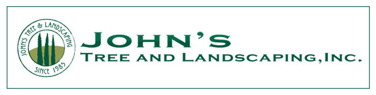 John's Tree and Landscaping
